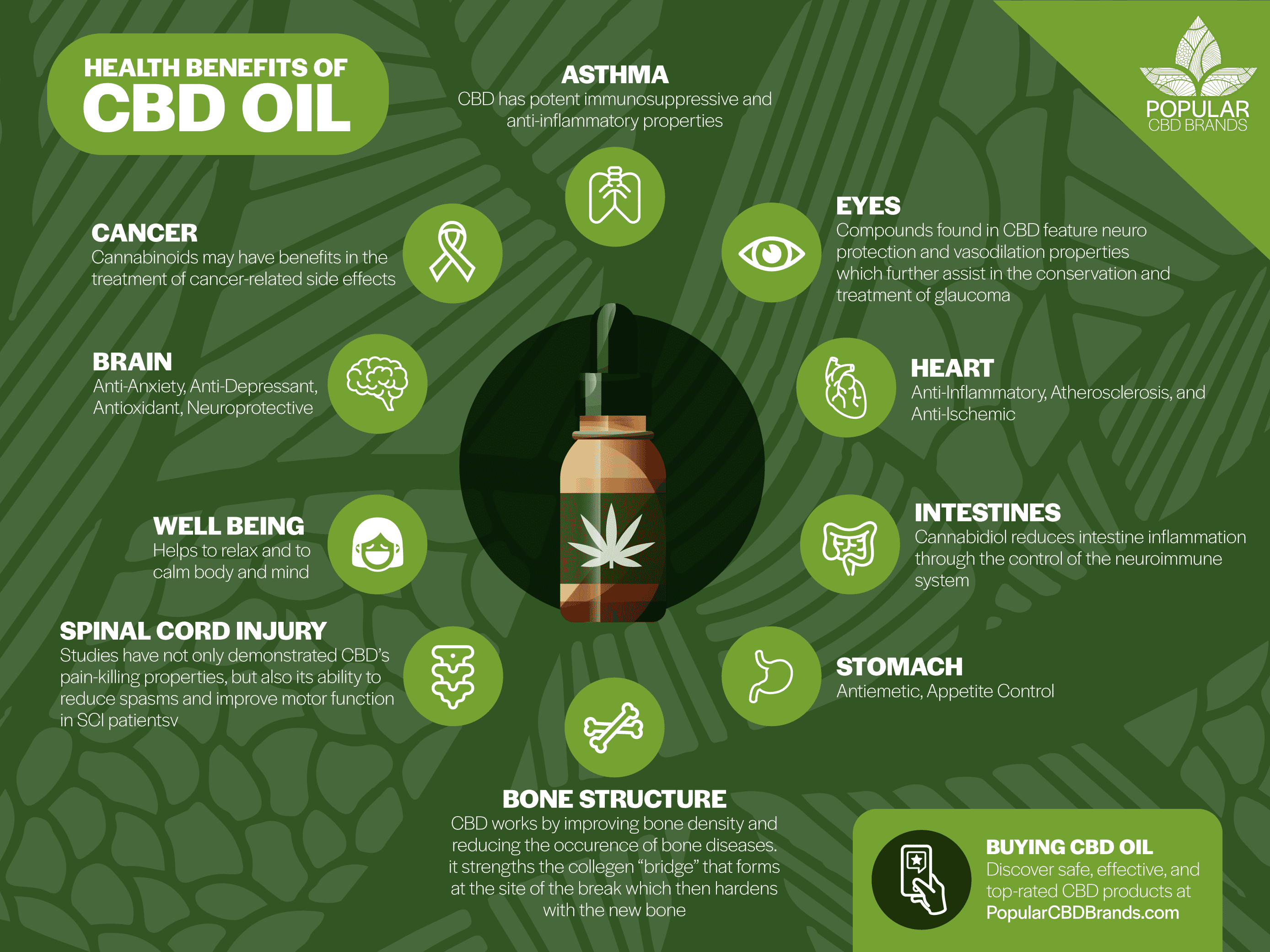 How to use CBD Oil – Facts about CBD