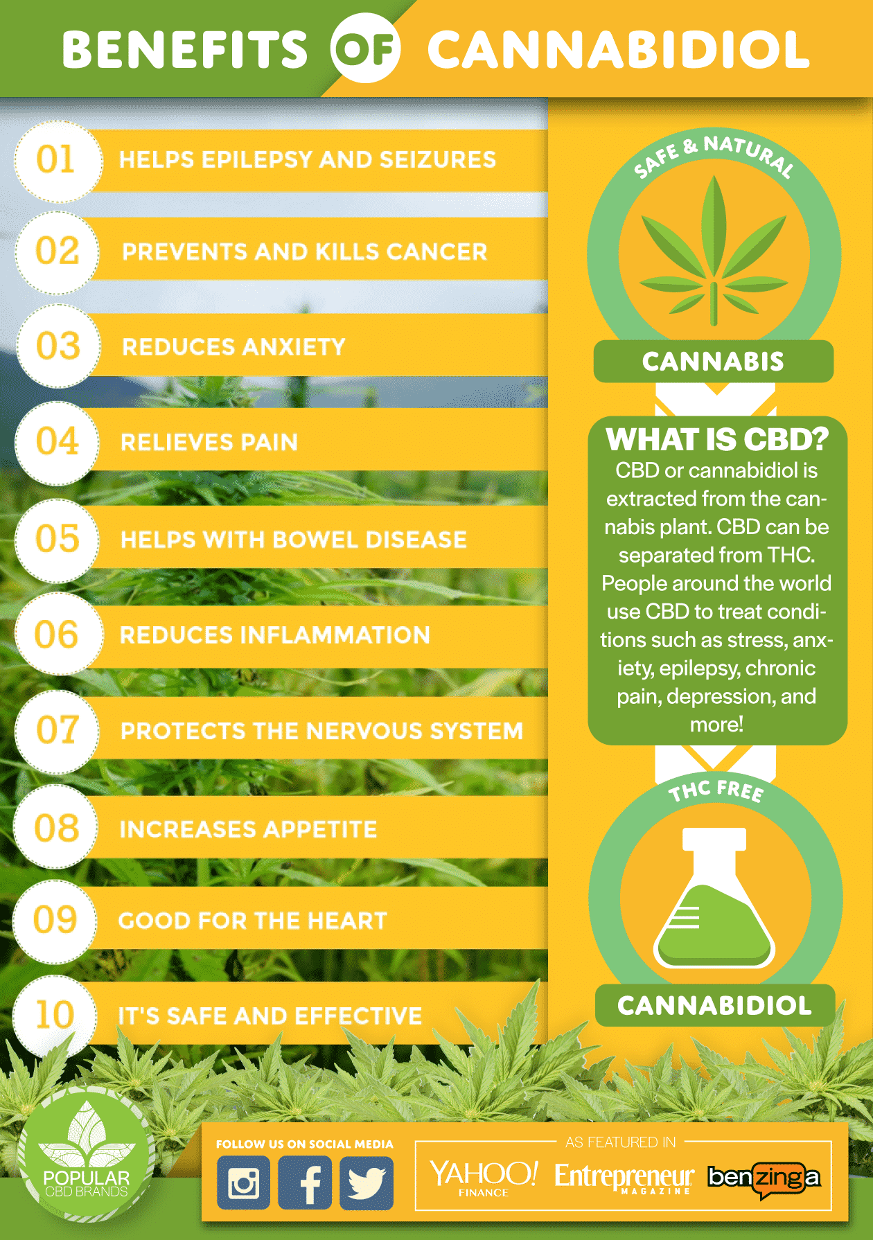 Best CBD oil - Benefits - Popular CBD Brands