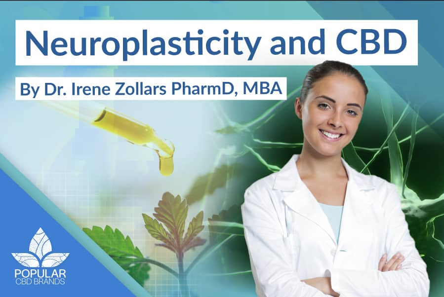 Can CBD Heal the Brain? Neuroplasticity and CBD